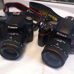 Canon50DとNikonD600の比較・撮り比べ
