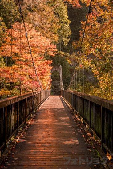 奥多摩もえぎ橋
