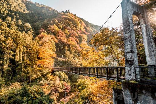 奥多摩もえぎ橋2
