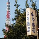 たまには東京タワーでも。昼と夕方とそして夜のイルミネーション【16枚】