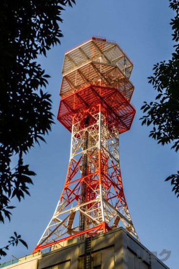東京タワーじゃない