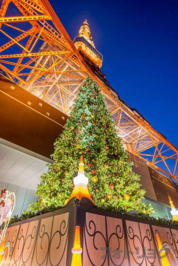 クリスマスツリーと東京タワー