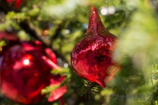 昼の恵比寿ガーデンプレイスのクリスマスツリーアップ