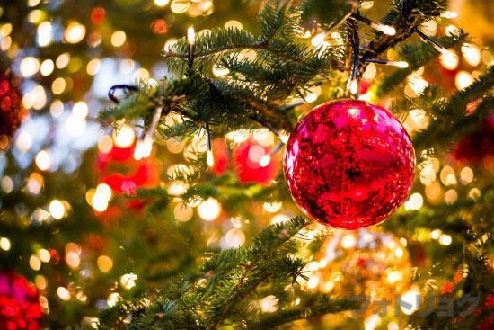 夕方の恵比寿ガーデンプレイスのクリスマスツリーアップ