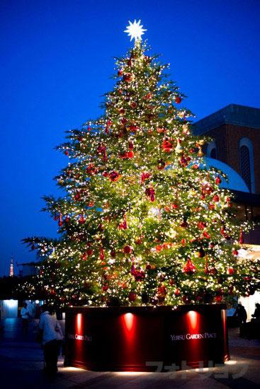 夜の恵比寿ガーデンプレイスクリスマスツリー