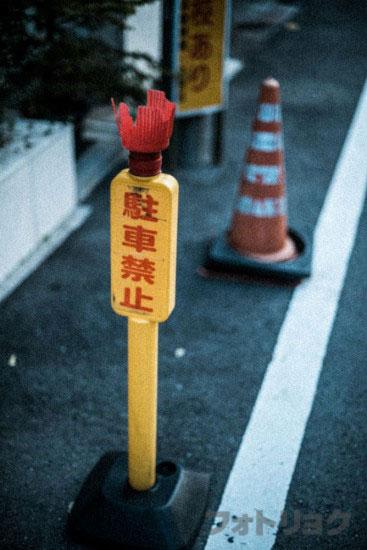 Nikon 50mm f/1.4 AIで撮った写真7