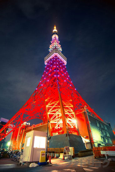 東京タワーライトアップ「ダイヤモンドヴェール」真下