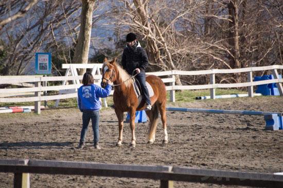 マザー牧場乗馬