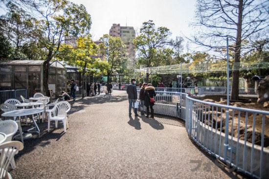 江戸川区自然動物園の混雑具合