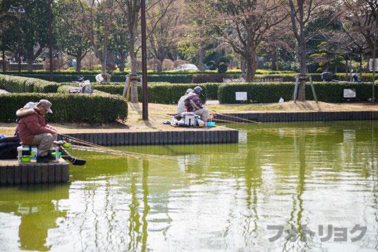行船公園の釣り堀