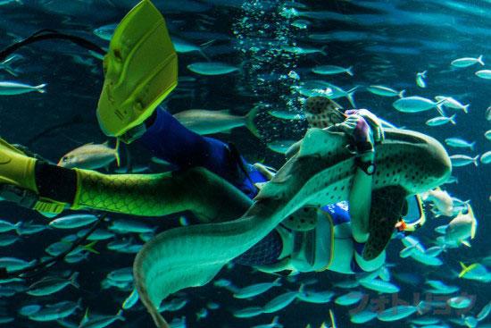 サンシャインラグーンの水中パフォーマンス6